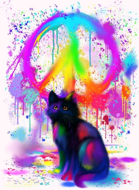 "Nick Gustafson ""Black Cat with Shades of Pink"""