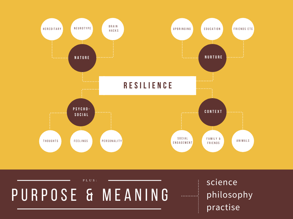 Purpose & Meaning
