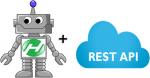 Rest API Robot Framework