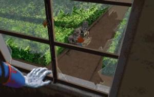 windowview