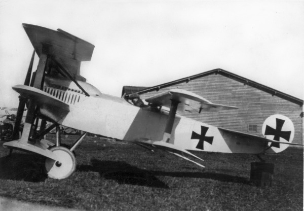 -Fokker_V.8_1917.jpg