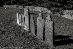 Some of the graves of Plain Meetinghouse Cemetery