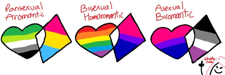 "A set of three interlocked hearts and diamonds, similar to those in the previous drawing. Each has a set of flags within them. The first combination of flags is ""pansexual aromantic"", the second is ""bisexual homoromantic"", and the third is ""asexual biromantic"". Underneath the third set is a simple drawing of a pink haired girl saying ""that's me""."