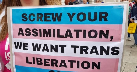 "A photo of someone holding a placard which reads ""Screw your assimilation, we want trans liberation""."