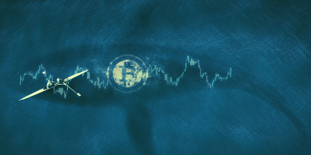 Bitcoin whales are multiplying—while also getting poorer: report – Decrypt