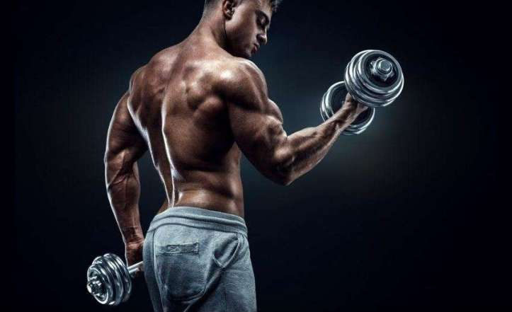 how to build big arms biceps triceps and forearms fast