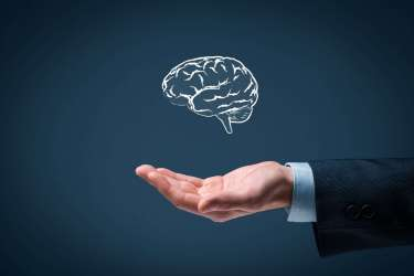 creatine-boosts-intelligence