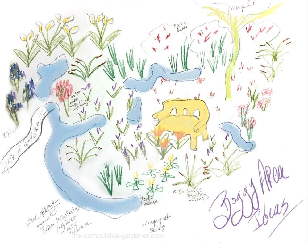 Boggy area garden design sketch