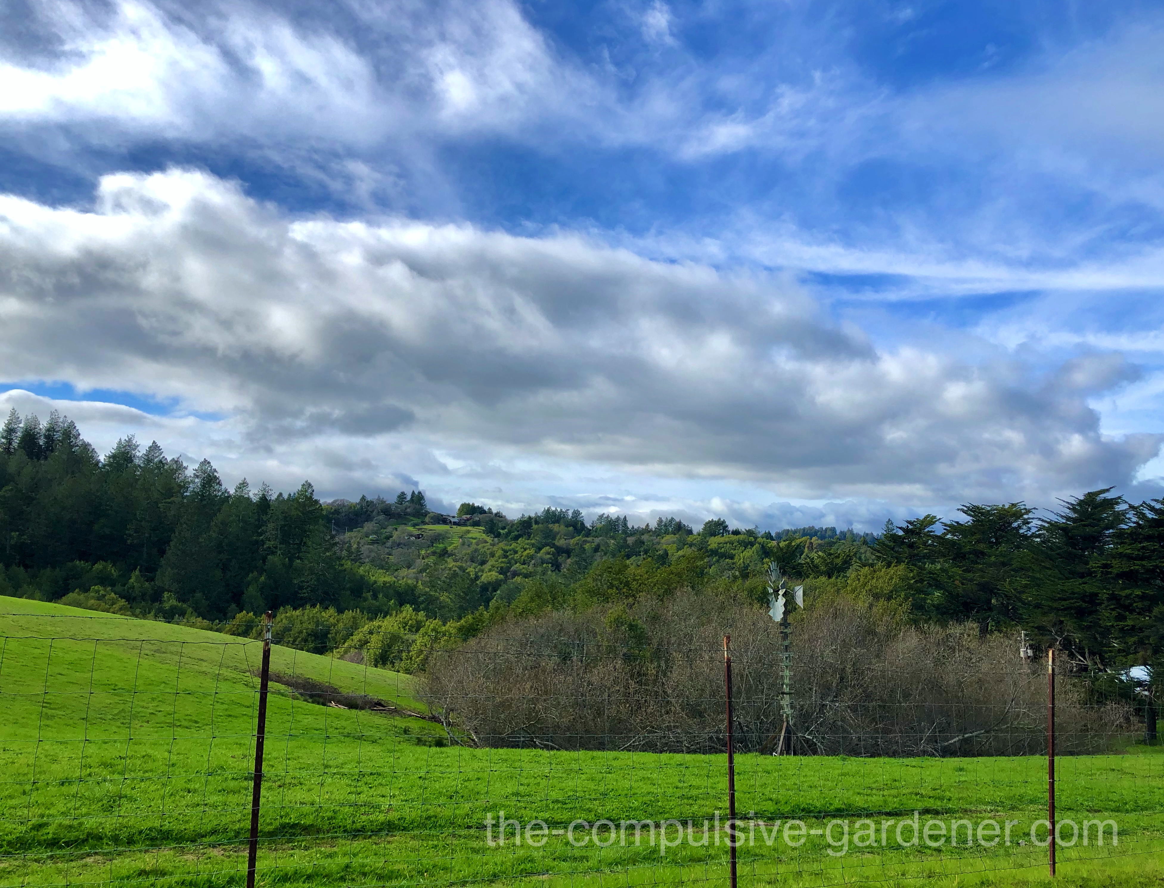 Rolling hills and wildmill in Sonoma County