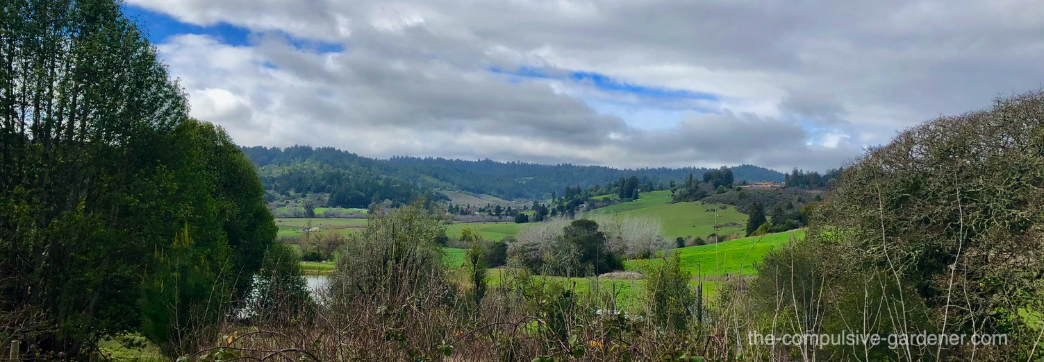 Rolling hills of Sonoma County, CA