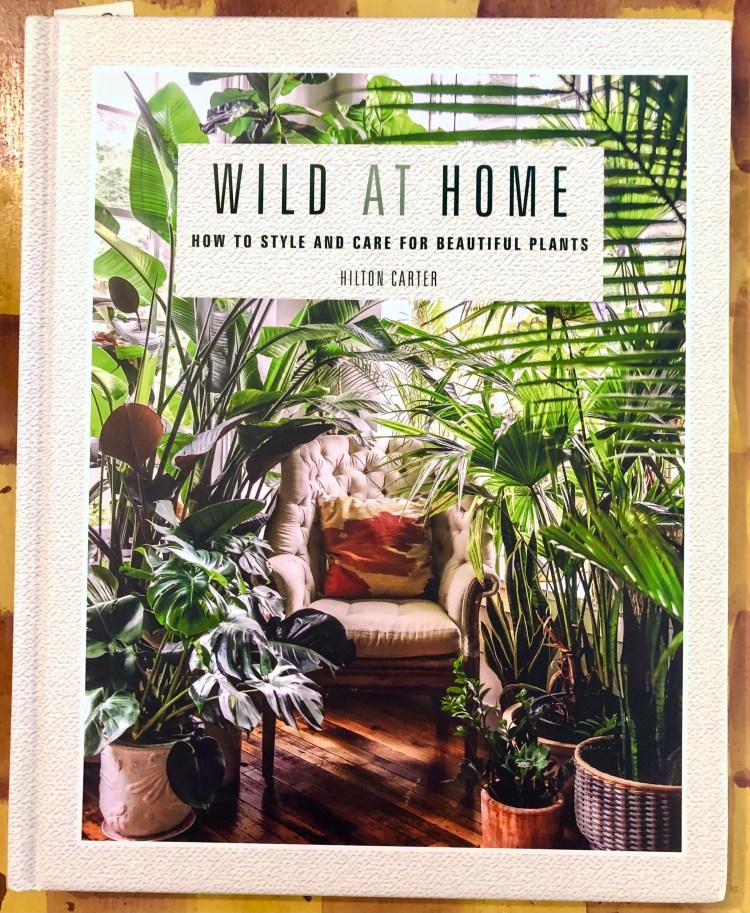 Wild At Home book by Hilton Carter -- inspiring photos!!