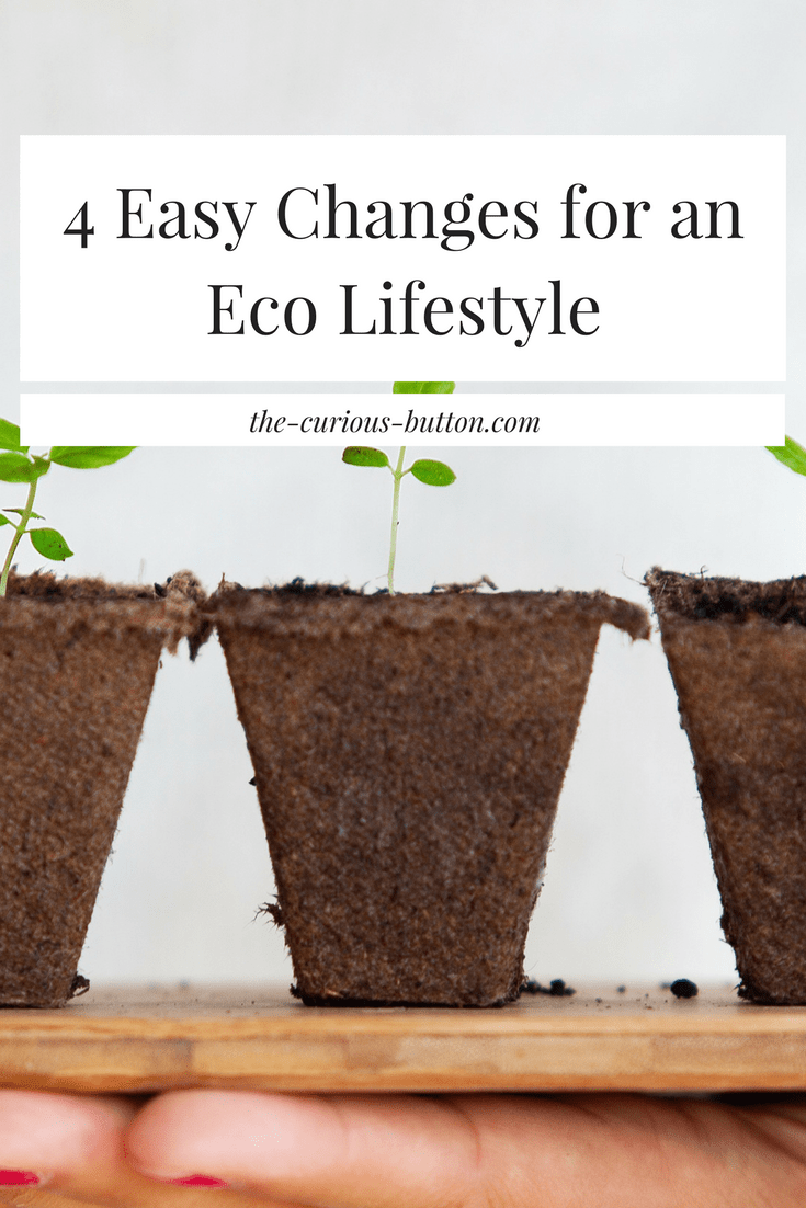 4 Easy Changes for an Eco Lifestyle | The Curious Button