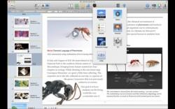 Apple Announces Updates for iBooks, iBooks Author Apple e-Reading Software eBookstore