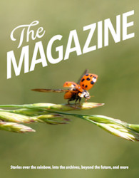"Pioneering Digital-Only Magazine ""The Magazine"" to Close By the End of the Year Subcompact Publishing"