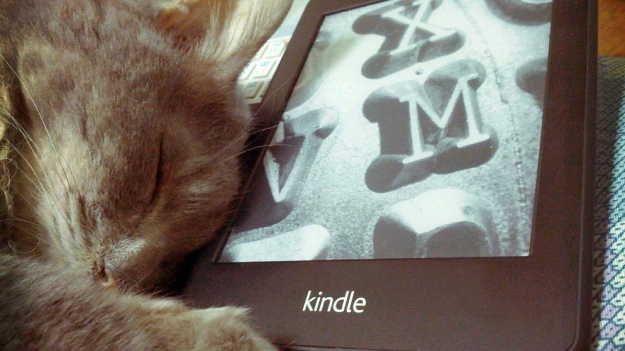 Question: Is Kindle Unlimited One of the World's Largest