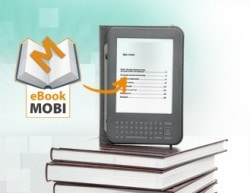 Is the Post-DRM Future of the German eBook Market the Polish Model, or the Dutch Model? DRM