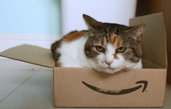 Amazon Steps Up Recruitment as it Expands in Europe Amazon