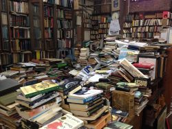 eBook Guilt, or Is My Kindle Reading Harming My Beloved Community Bookstore? Bookstore