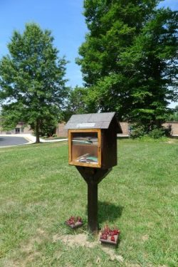 What's the Oddest Thing You've Found in a Little Free Library? Book Culture