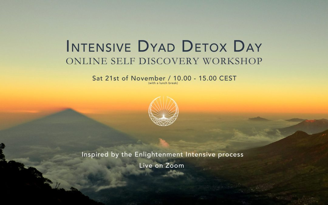 INTENSIVE DYAD DETOX DAY: ONLINE SELF DISCOVERY WORKSHOP