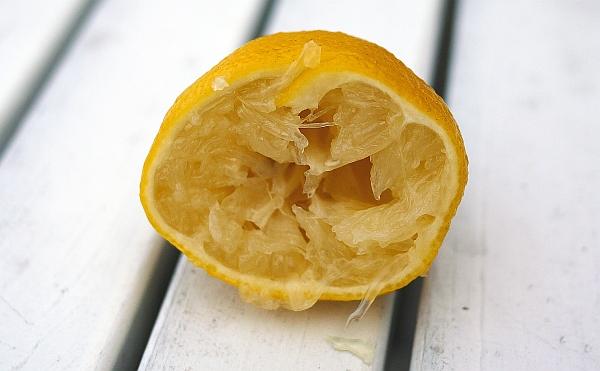 Zitrone und Muskat - die Geschmackshelfer