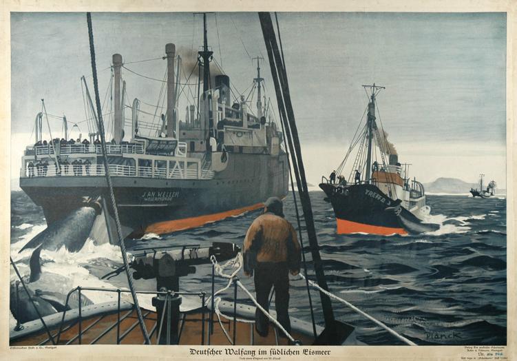 Walfangschiff Jan Wellem ca. 1937 (zeitgenössische Illustration)