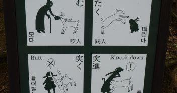 Japanische Gebrauchsanleitung für Tiere?