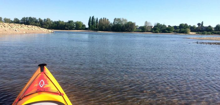 Raus aus dem Kies, rein in den Rhein (Foto: Konrad Buck)