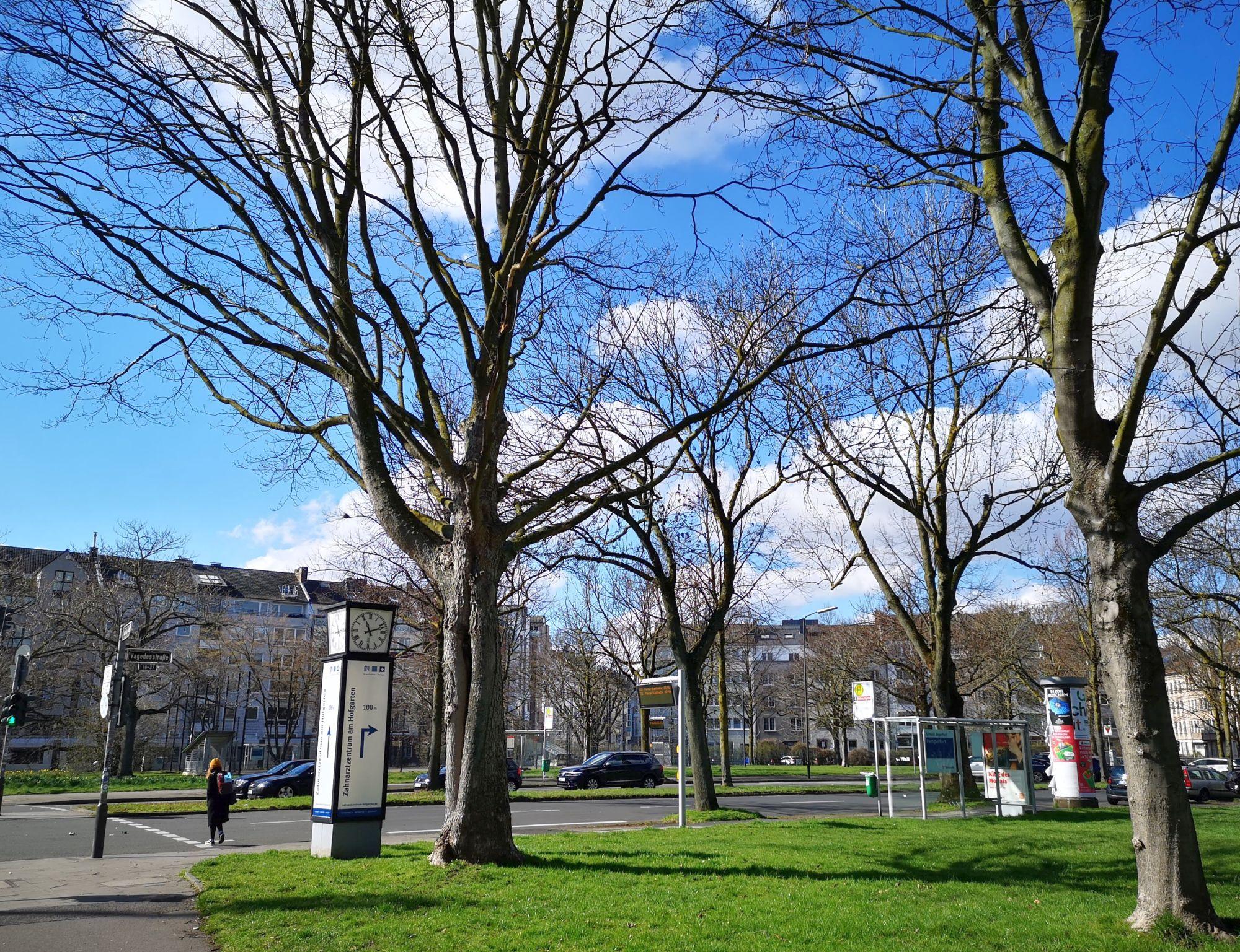 Der Adolph-von-Vagedes-Platz m Rande von Pempelfort (Foto: TD)