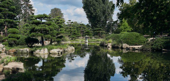 Der japanische Garten im Nordpark (Foto: Düsseldorf Tourismus)