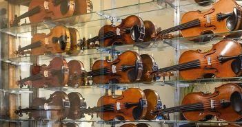 Jede Menge alte Geigen (Foto: Geigenbau Kürten)