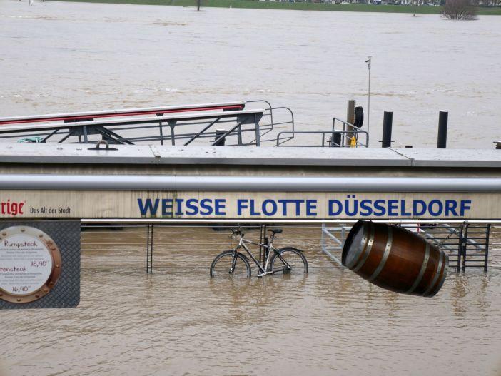 Januar 2018: Das Untere Rheinwerft ist abgesoffen (Foto: TD)