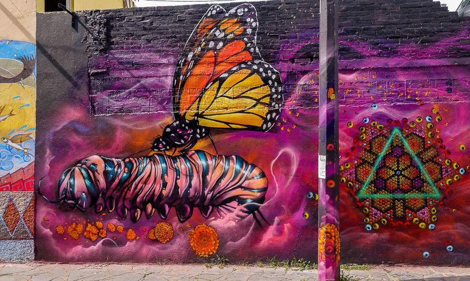 mexico-street-art-5