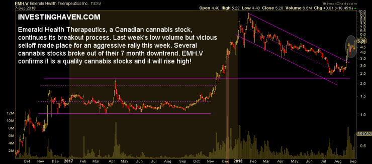 cannabis stock 2019
