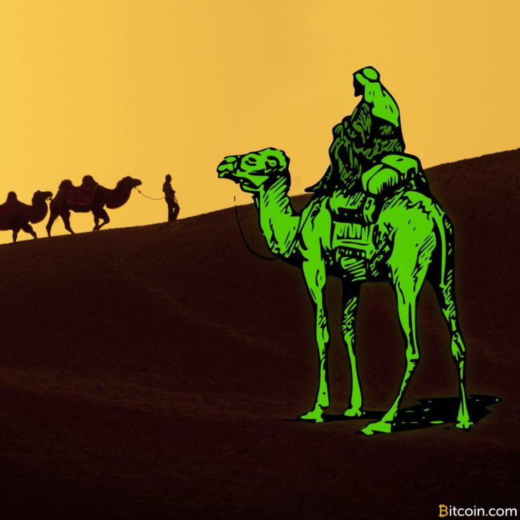 Silk Road Operator Libertas Pleads Guilty, Seeks Plea Deal