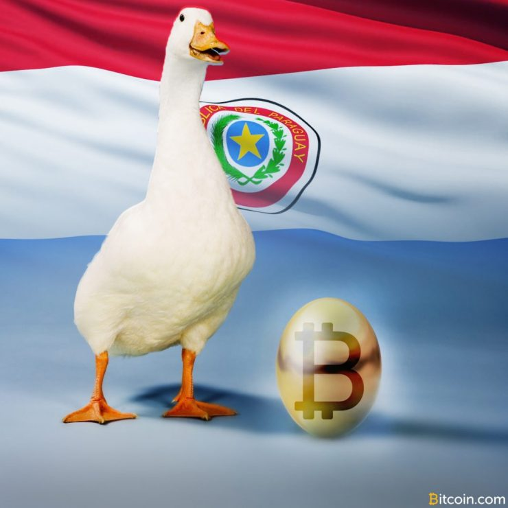 Paraguay to Provide Land for 'Golden Goose' Mining Project