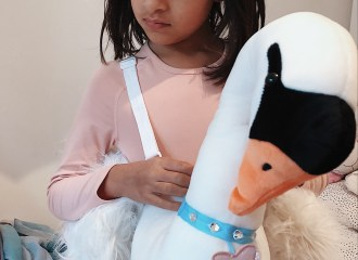 The-FT-Times-Blog-Swan-costume-Bjork