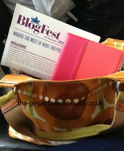 Blogfest programme