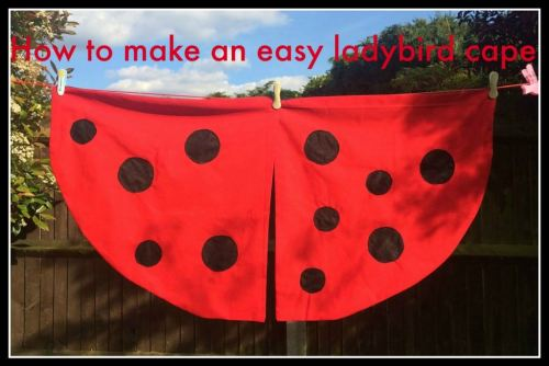 how to make an easy ladybird cape