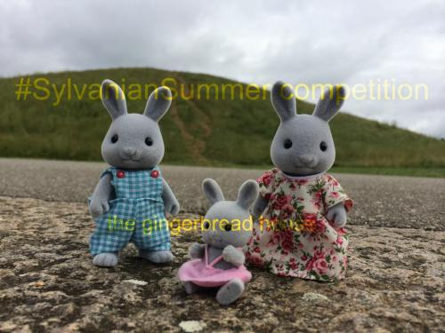 #SylvanianSummer competition