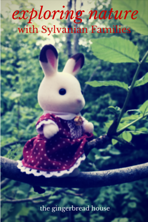 exploring nature with Sylvanian Families - the gingerbread house