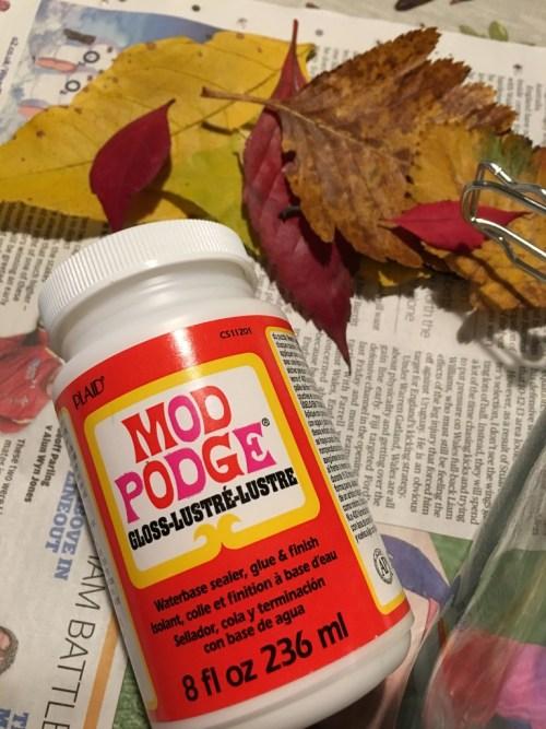 DIY Autumn leaves luminary