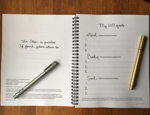 Stigu Planner 2017 review