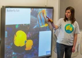 Butterfly fish presentation