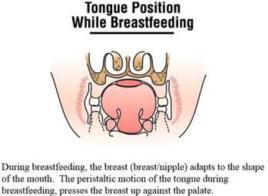 Proper breastfeeding posture