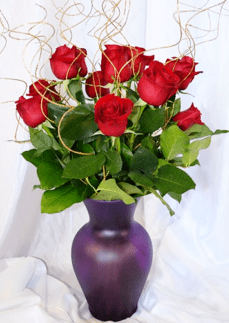 dozen red roses with decorative gold spirals_the_little_flower_shop_florist_online_bouquets-min
