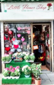 the-little-flower-shop-shop-front