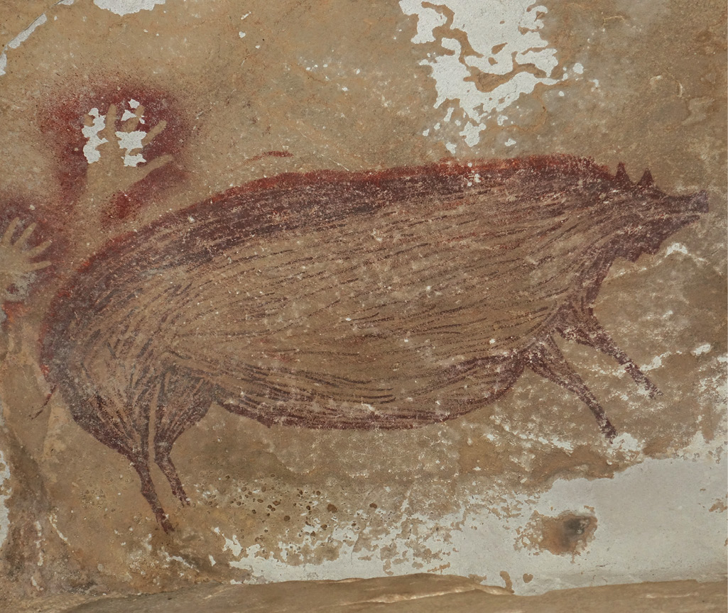 ABOVE This painting of a Sulawesi warty pig has been dated back to at least 45,500 years ago.