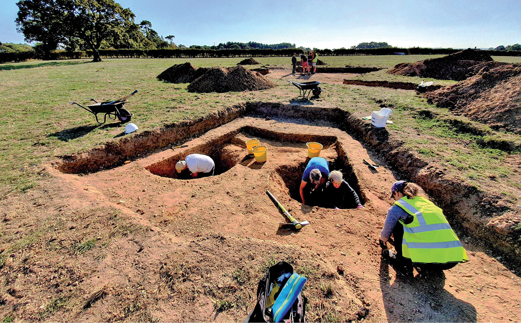 Bronze Age monument uncovered in the New Forest