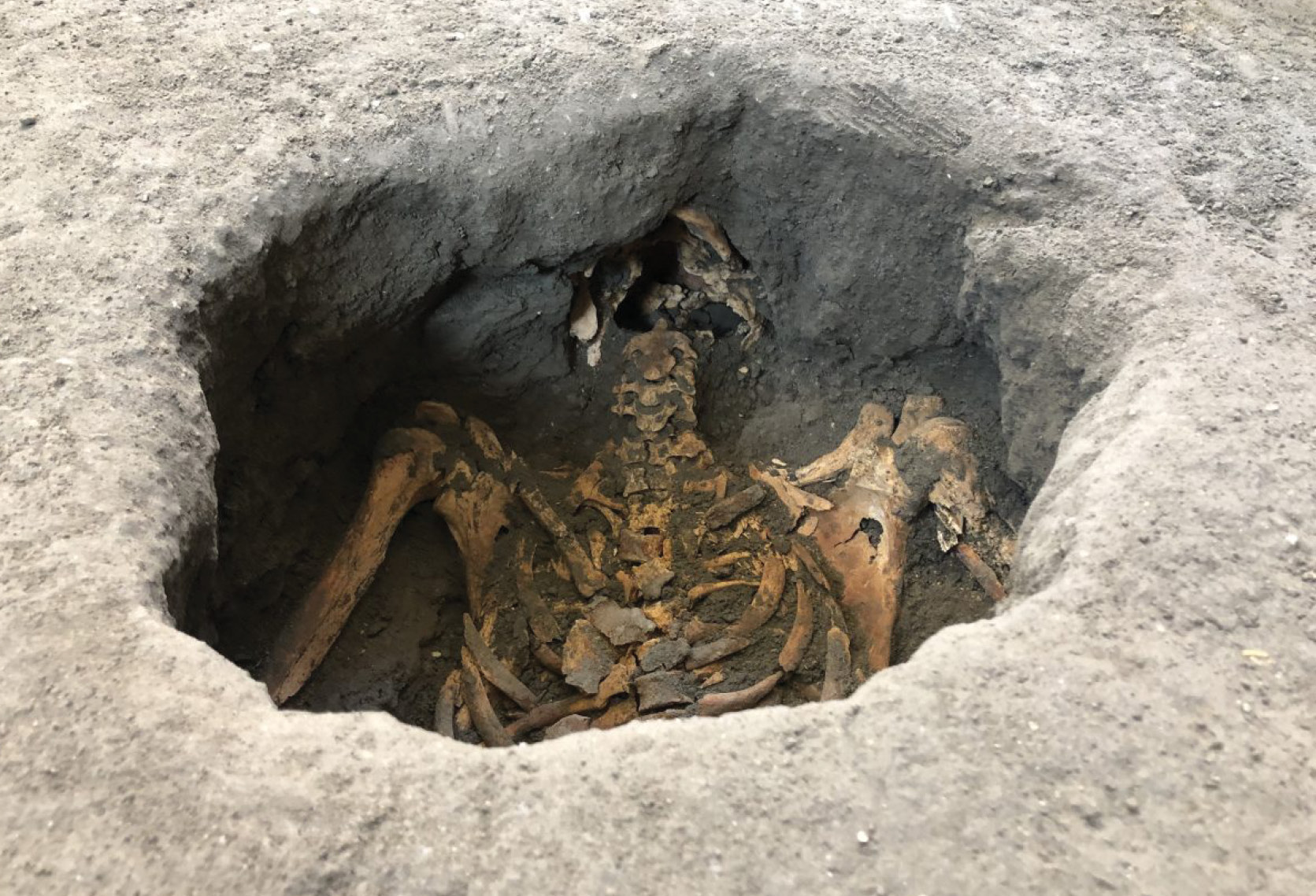 Victims of Vesuvius